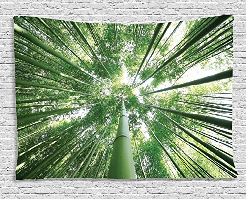Ambesonne Bamboo Tapestry, Tropical Rain Forest Tall Bamboo Trees in Grove Exotic Asian Style Nature Zen Theme Image, Wall Hanging for Bedroom Living Room Dorm, 60 W X 40 L Inches, Green