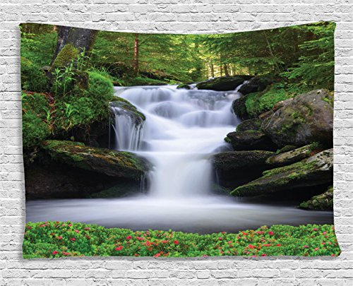 Natural Waterfall Tapestry Ambesonne Flowers
