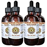 Black Cohosh Liquid Extract, Organic Black Cohosh (Cimicifuga Racemosa) Tincture Supplement 4x4 oz