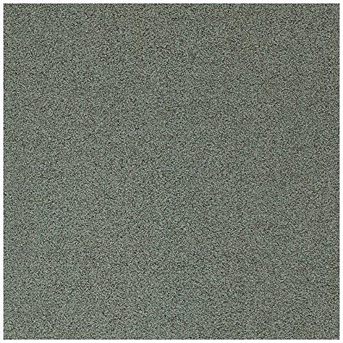 Dal-Tile 881P-CD07 Porcealto Tile, 8'' x 8'', Verde Alghero by Daltile
