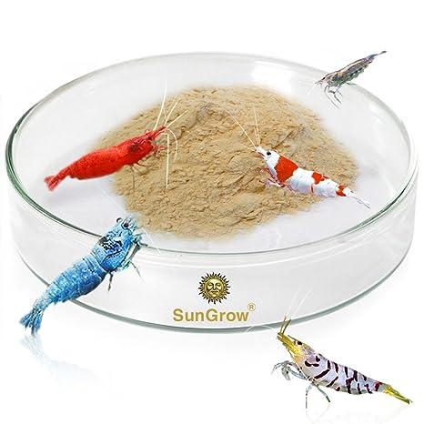 Tough Borosilicate Glass Shrimp - Fuente de alimentación para camarones - Evita derrames de alimentos y