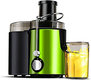 Juicer Machine, Wide Mouth Juice Extractor Juicers For Whole Fruit And Vegetable, Food Grade Stainless Steel, BPA-Free Dual Speed Setting Centrifugal Juicer With Anti-drip Function ( Color : Green )