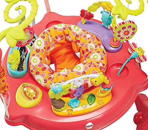 Fisher Price Petals Jumperoo Pink