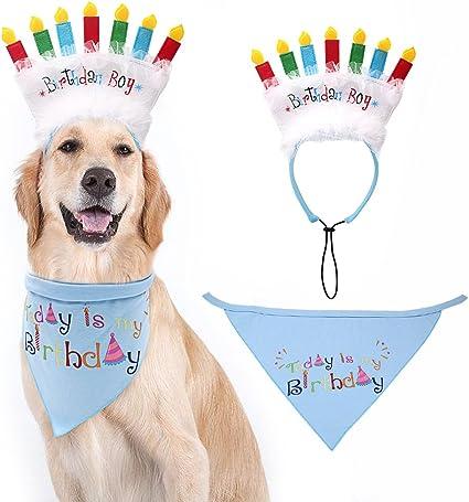 Amazon.com: Bandana de cumpleaños para perro con diadema de ...