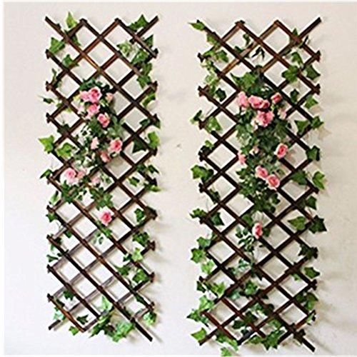 Shanghaipop Wood Wall Trellis Expanding Garden Flower Plant Climbing Fence Brown 150cmX30cm