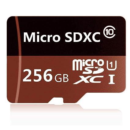 Micro SD SDXC - Tarjeta de Memoria SDXC (256 GB, Clase 10, Velocidad de Transferencia, cámaras de acción, teléfonos, tabletas)