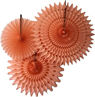 product image for Set of 3 Honeycomb Tissue Fans, Peach (13-21 Inch)