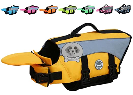 The Best Dog Life Jacket 4