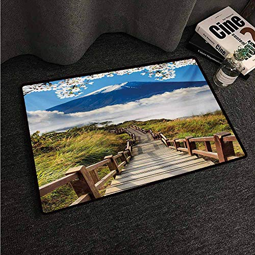 (HCCJLCKS Interior Door mat Nature Cloudy Mountain Valley Road Spring Paradise Inspirational Peaceful High Tops Scenery Country Home Decor W30 xL39 Multicolor)