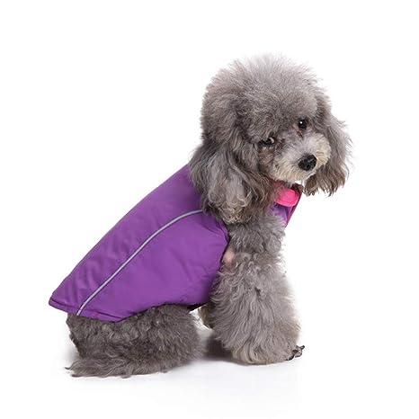 Cvthfyk ex Ropa para Mascotas Ropa para Perros Ropa para Mascotas Ropa de algodón Ropa para