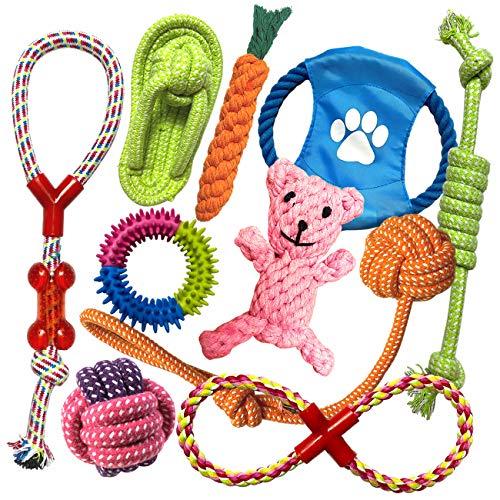 TINGERIA® Hundespielzeug für kleine & mittelgroße Hunde, 10-teiliges Welpenspielzeug Set, Hunde Spielsachen Zubehör…