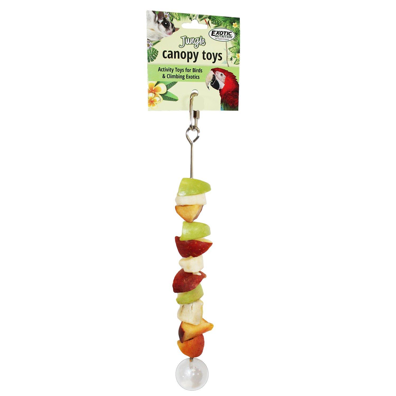 Exotic Nutrition Stainless Steel Fruit Skewer