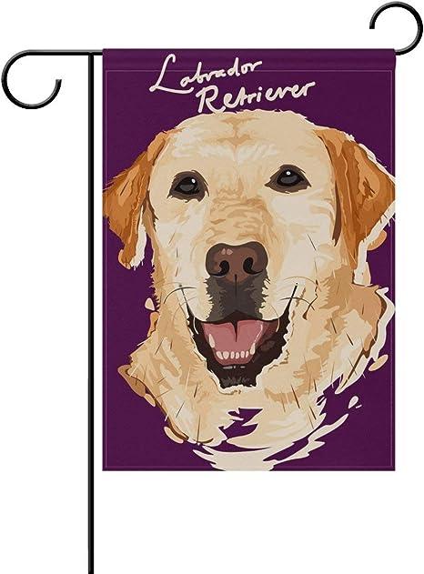 Yateli Doodle Cartoon Labrador Retriever Dog Garden Flag Banner 28 X 40 Inch Decorative Lawn And Home Double Sided Amazon Co Uk Garden Outdoors