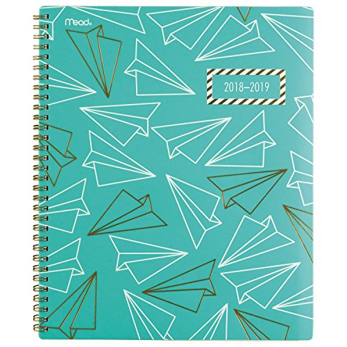 Bold Border Big (Mead 2018-2019 Academic Year Weekly & Monthly Planner, Large, 8-1/2 x 11, Gold & Bold, Airplane (CAW508D2))