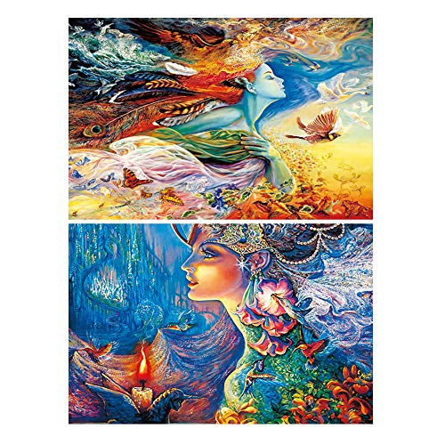 2-Pack 5D Diamond Painting Kits For Kids & Adults, Betionol Painting Cross Stitch Full Drill Crystal Rhinestone Painting By Number Kits, Flower Fairy & Bird Fairy, 9.8 x 13.7 inch