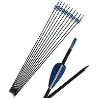 31 Inch Archery Target Carbon Arrows Spine 1200 Target Hunting Practice Mix Carbon Arrow Shaft (12 pcs)