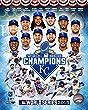 Kansas City Royals 2015 World Series Champions Team Composite Photo (Size: 8\