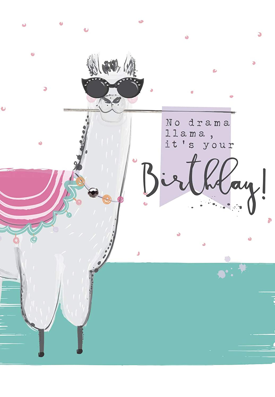 Llama Fiesta The Wildlife Ling Design Quality NEW Birthday Card