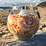 The Cape Cod LIFE IS BETTER AT THE SEASIDE, Rustic Candle Lantern, Nautical Glass, Chrome Hardware with Gray Rope Handle, 8 Inches High Globe, By Whole House Worlds