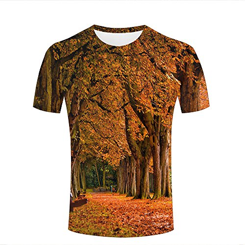 Mens 3D Printed Autumn View Deciduous Tree Graphic Casual Couple T Shirts Tops M ()