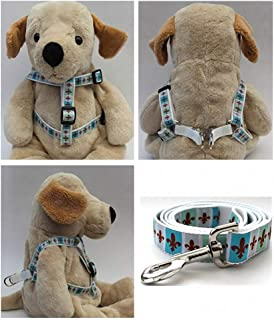 """product image for Diva-Dog 'French Quarter' Custom 5/8"""" Wide Dog Step-in Harness with Plain or Engraved Buckle, Matching Leash Available - Teacup, XS/S"""