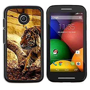 LECELL--Funda protectora / Cubierta / Piel For Motorola Moto E -- Tiger Beige Wild Big Cat naturaleza animal --