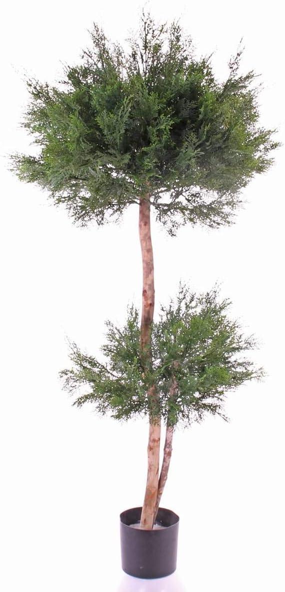 artplants.de Set de 2 x Árbol camecíparis Artificial SONOKO,protegida de Rayos UV, 150cm - Pack arbustos sintéticos - Árboles Decorativos: Amazon.es: Hogar