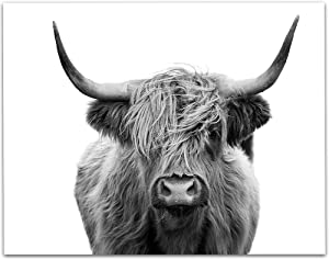 Highlands Cow Black and White - 11x14 Unframed Print - Great Gift and Decor for Farmhouse and Home Under $15