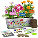 Dan&Darci Paint & Plant Flower Growing Kit - Grow Cosmos, Zinnia, Marigold Flowers : Includes Everything Needed to Paint & Grow - Great Gardening Science Gifts for Girls and Boys Ages 6 7 8 9 10: more info