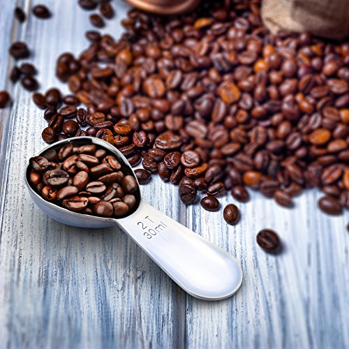 1Easylife Endurance 18/8 Stainless Steel Coffee Scoop, 2 Tablespoon (30ML) Exact, Pack of One