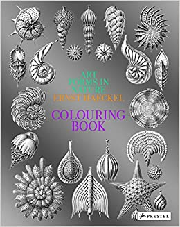 Amazon.com: Art Forms in Nature: A Colouring Book of Ernst ...