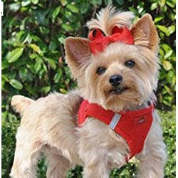 """DOGGIE DESIGN American River Ultra Choke-Free Harness (Red, Large (Chest 19""""-21"""" Weight 16-25 Lbs))"""