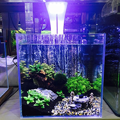 Amazon.com : JackSuper 24 LED Aquarium Planted Light, 10W Full Spectrum Plant Grow Clip Lamp Fish Tank Lighting White and Blue LED (White) : Pet Supplies