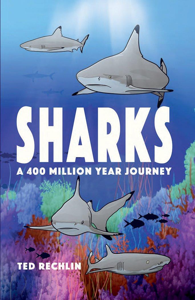 Sharks: A 400 Million Year Journey