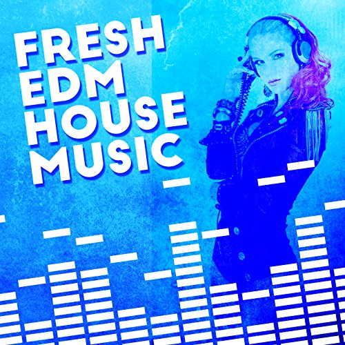Disco hustle fresh house music mp3 downloads for House music mp3