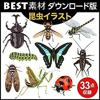 Amazoncojp Best素材昆虫イラストダウンロード版 ソフトウェア
