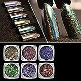 RoseFlower 6 Colours Beauty Nail Art Glitter Laser Magic Shining Mirror Nail Powder Nail Tips Decoration