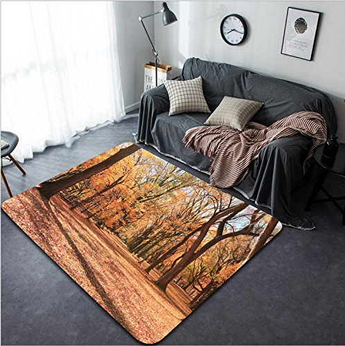 Vanfan Design Home Decorative 273204293 Foliage at mall in central park Modern Non-Slip Doormats Carpet for Living Dining Room Bedroom Hallway Office Easy Clean - Tucson Mall Park