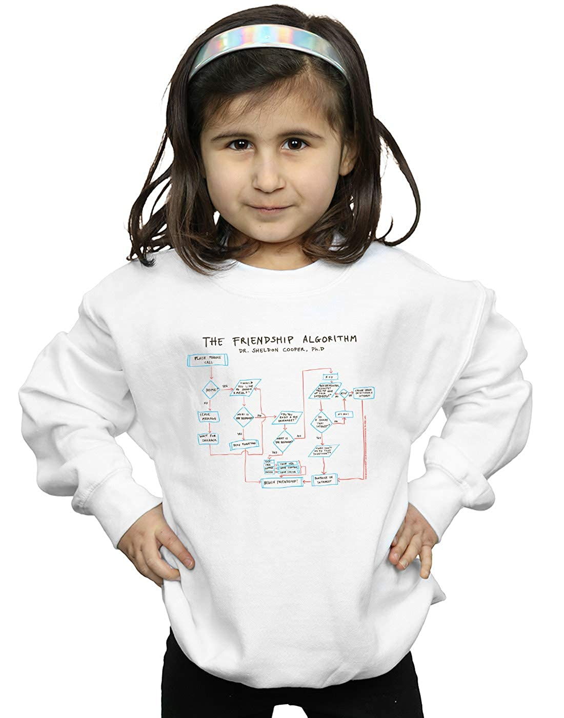 The Big Bang Theory Girls Friendship Algorithm Sweatshirt