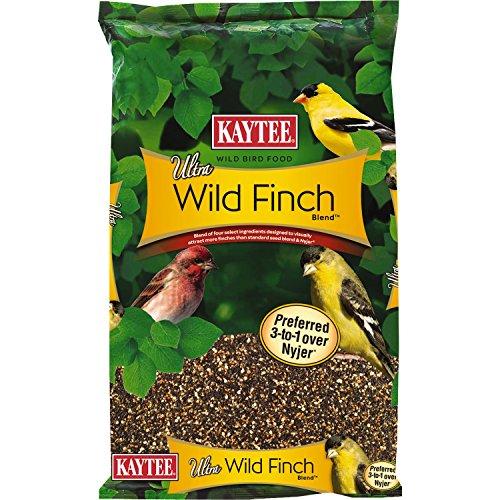 finch food - 7