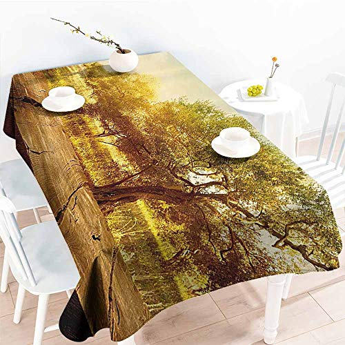 Homrkey Easy Care Tablecloth Landscape Mystic Forest Flowers Trees Farm with Wooden Deck Oil Painting Image Sepia Umber Peach Picnic W50 xL80