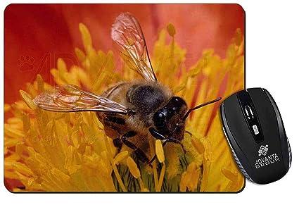 La miel de abeja en la flor Estera del ratón del ordenador regalo de Navidad de