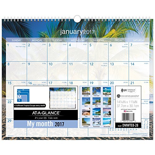 "AT-A-GLANCE Wall Calendar 2017, Monthly, 14-7/8 x 11-7/8"", Tropical Escape (DMWTE8-28)"