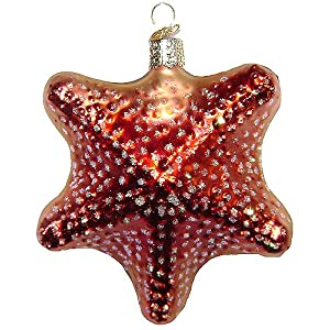 61A-x7sTAhL._SS300_ 50+ Starfish Christmas Ornaments