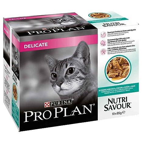 PRO PLAN CAT pienso húmedo saborear 850gr pescado delicados Comida ...