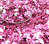 Pastel Rose Authentic Imported German Super Shard Glass Glitter - Largest Grain Size - SSG-Pastel R