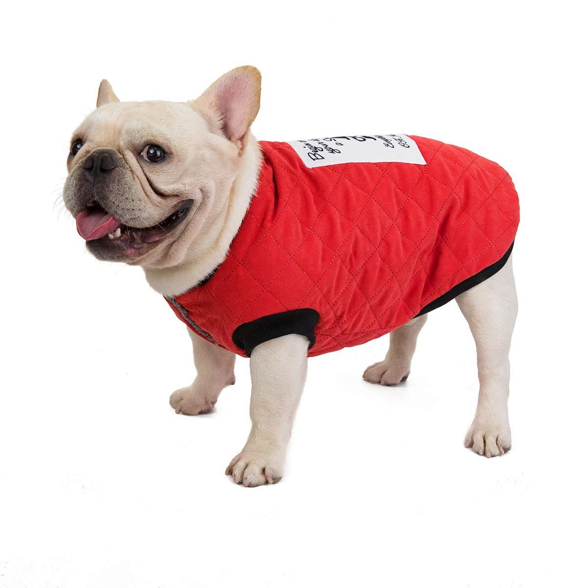 XL, Verde Tineer Pet Soft Giacca Felpata French Bulldog Vestiti Suede Plaid Cotone Addensare Cappotto Giacca per Cani di Piccola Taglia Media Completo Costume Autunno e Inverno Caldo