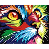 [No Framed] Diy Oil Painting, Paint By Number Home Decor Wall Picture Value Gift Christmas Gift-Colorful kitten 16x20 inch