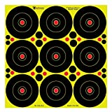 4 inch target - Smoke Ring Targets 4