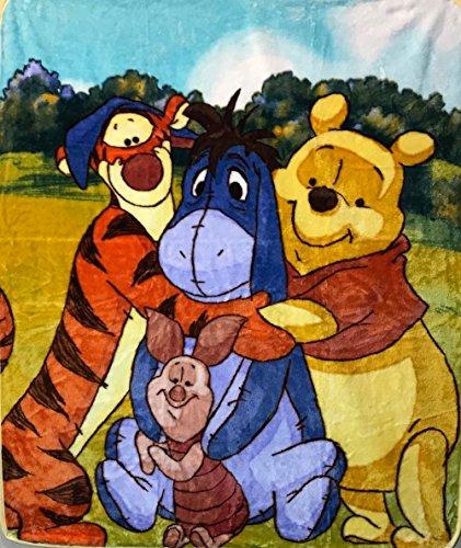 Winnie the Pooh & Me Eeyore Piglet Tigger 40x50 Mink Style Blanket in Gift ()